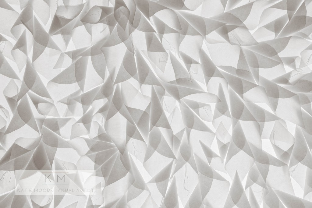 Katie Moore : Paper Bloom